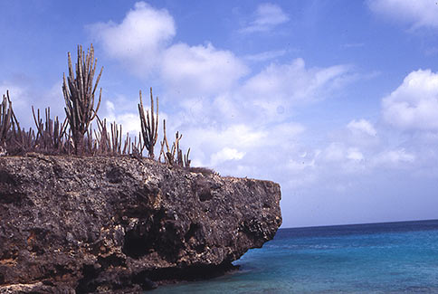 Washington National Park - Bonaire